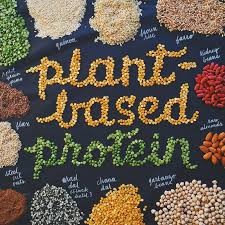credits: Best plant based protein .com